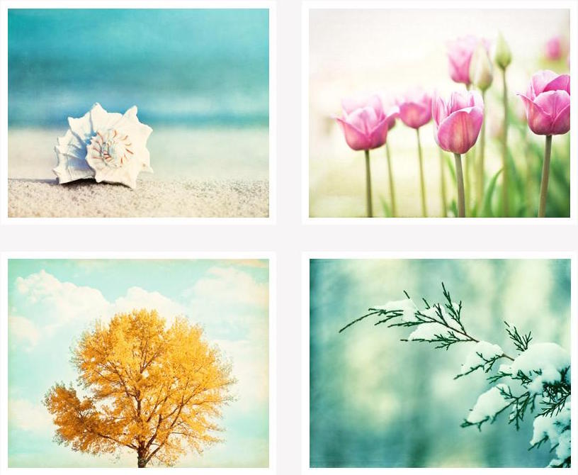 four-seasons-nature-photography_1024x1024.jpg