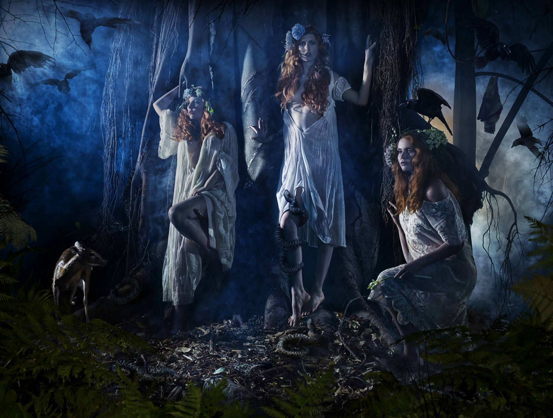 The Woodland Nymphs
