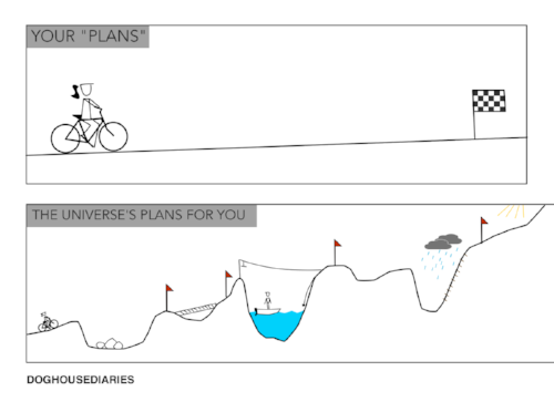 plan vs reality cofounding