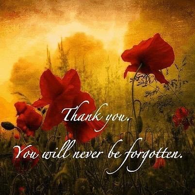 #remembranceday #lestweforget