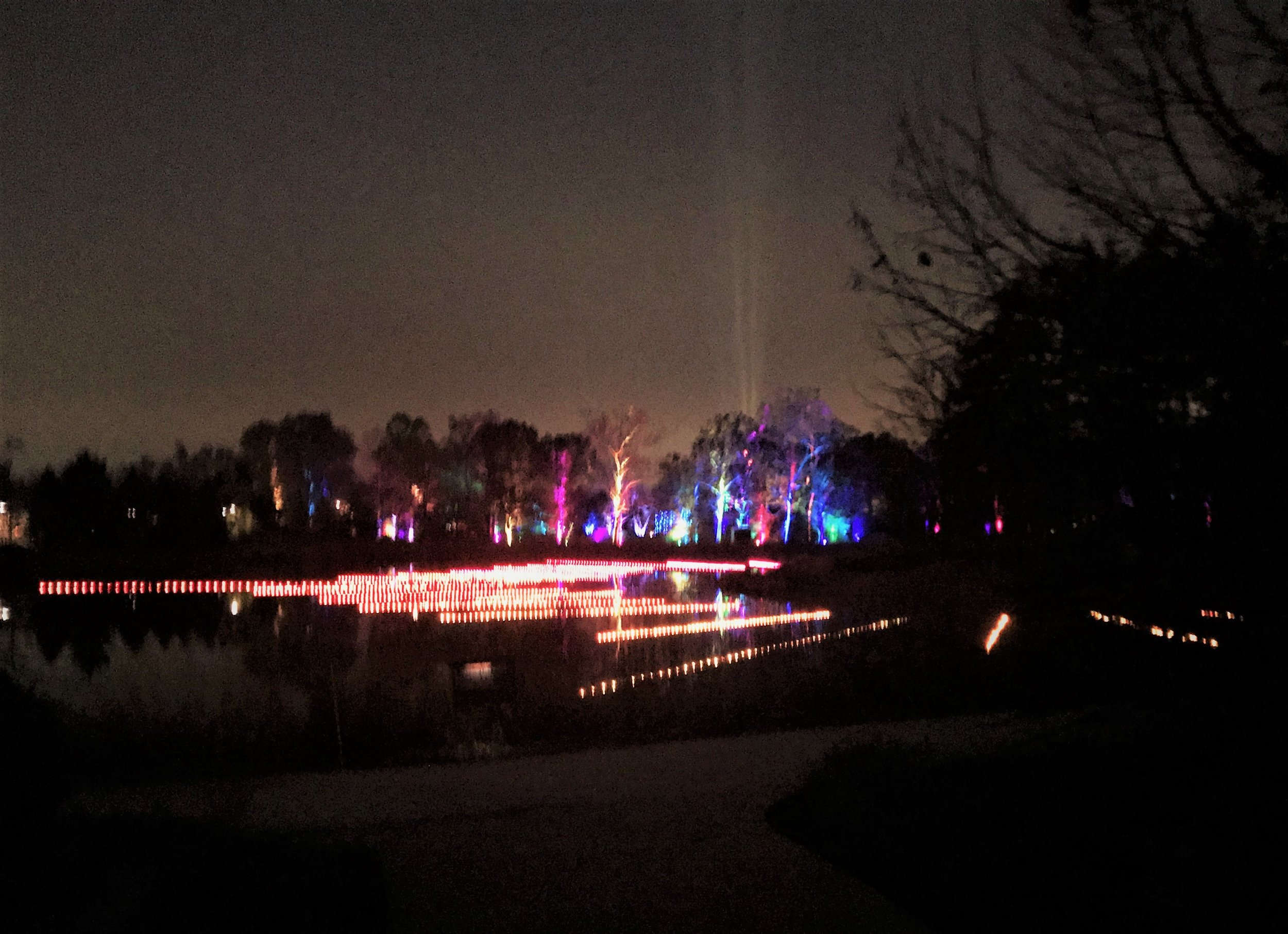 Lights on the surface of Morton Arboretum's Meadow Lake