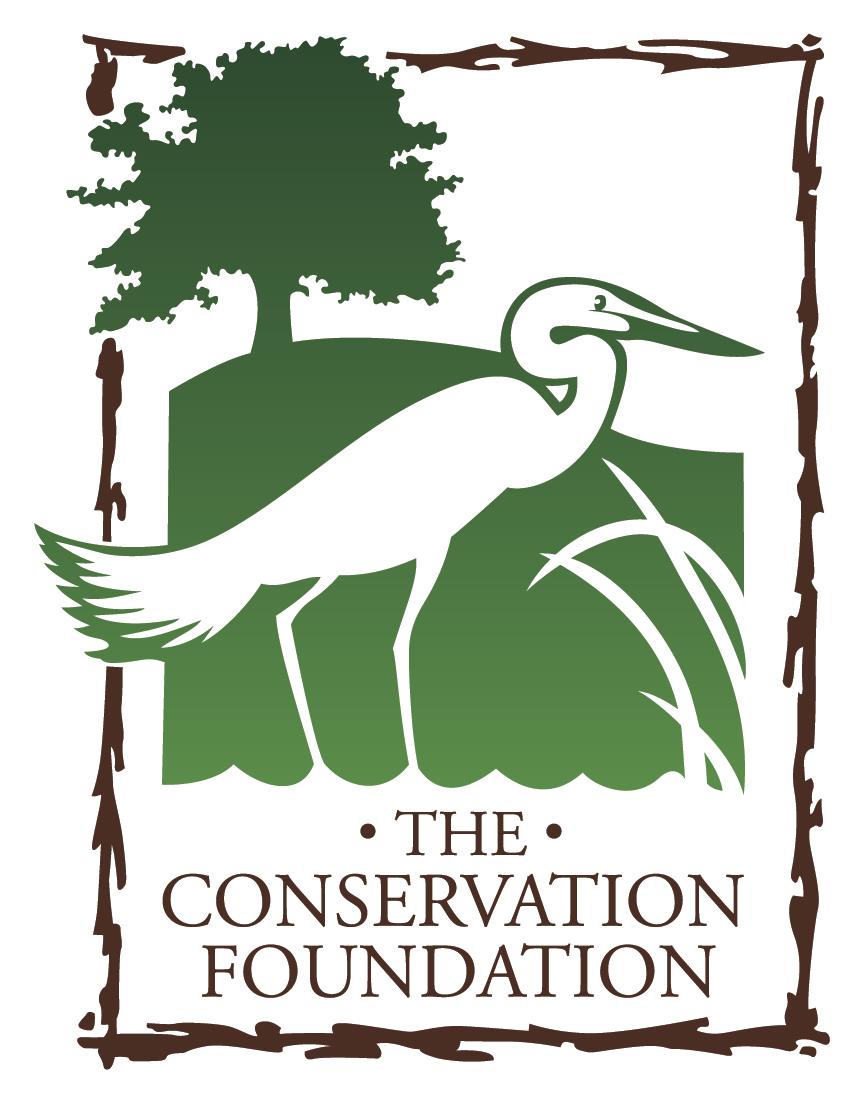 CONS_Logo.jpg