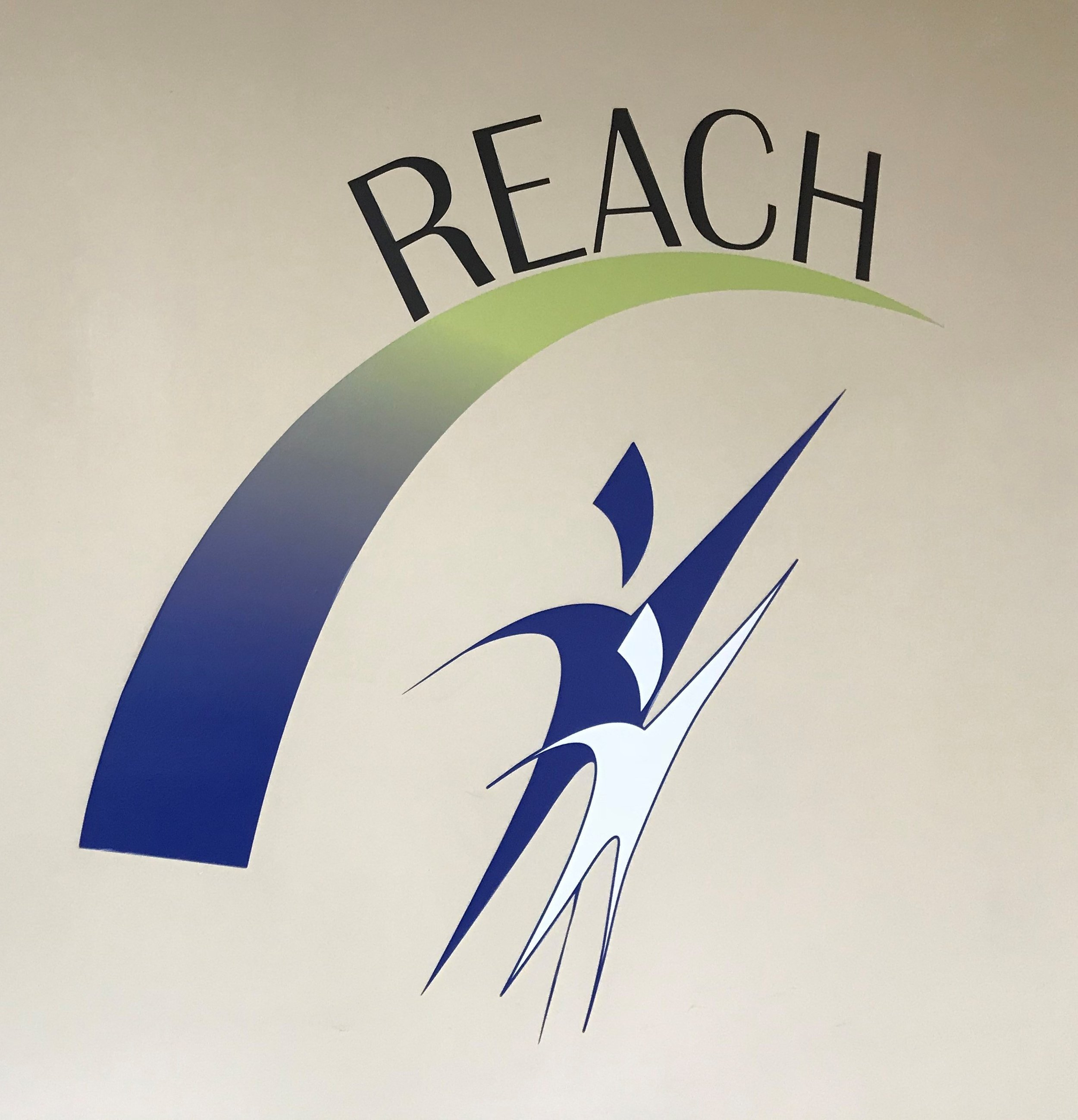 The REACH food pantry serves more than 200 DuPage County families that are dealing with food insecurity every month.