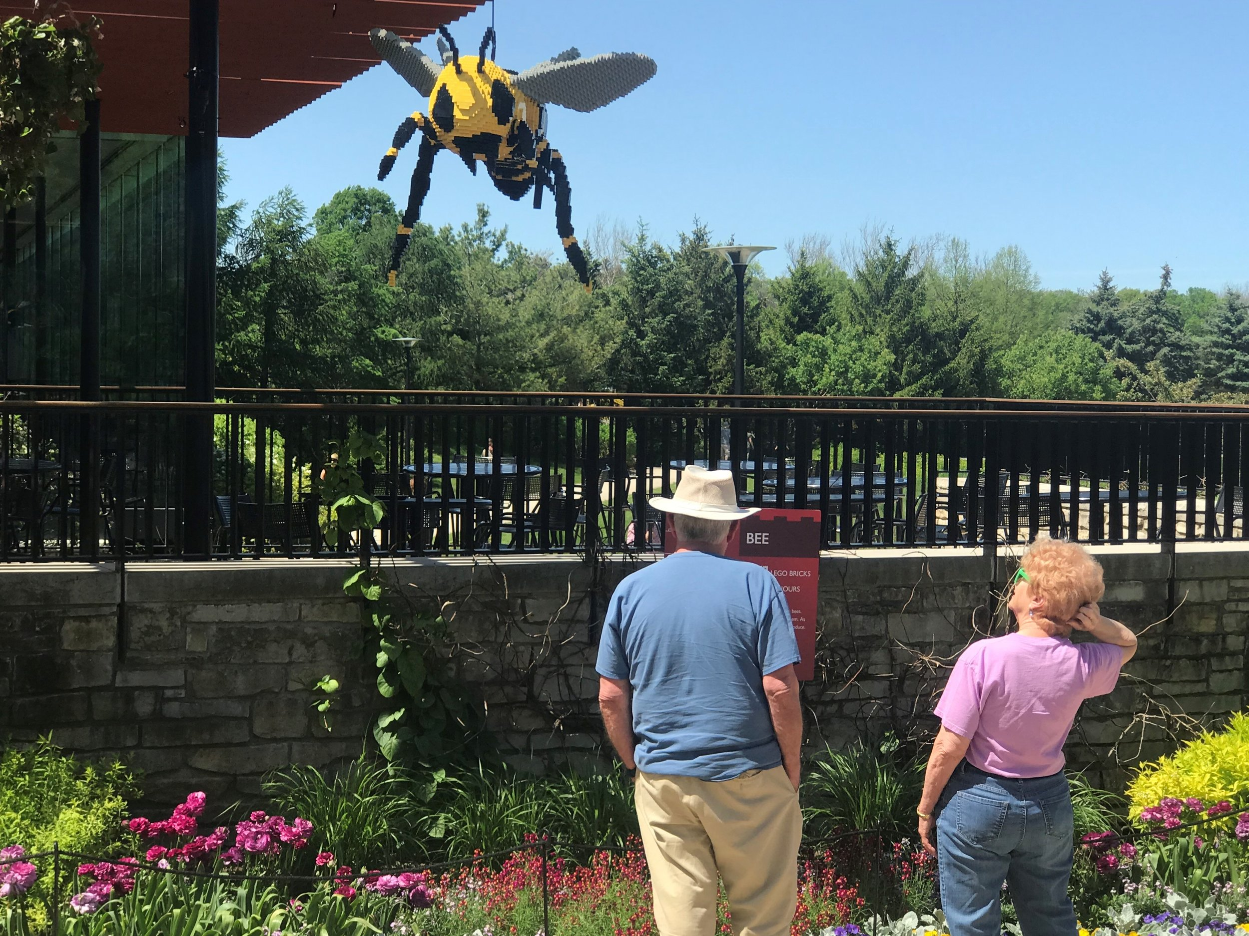 Visitors check out a giant bee, or is the bee checking them out near the Morton Arboretum's Ginkgo Cafe