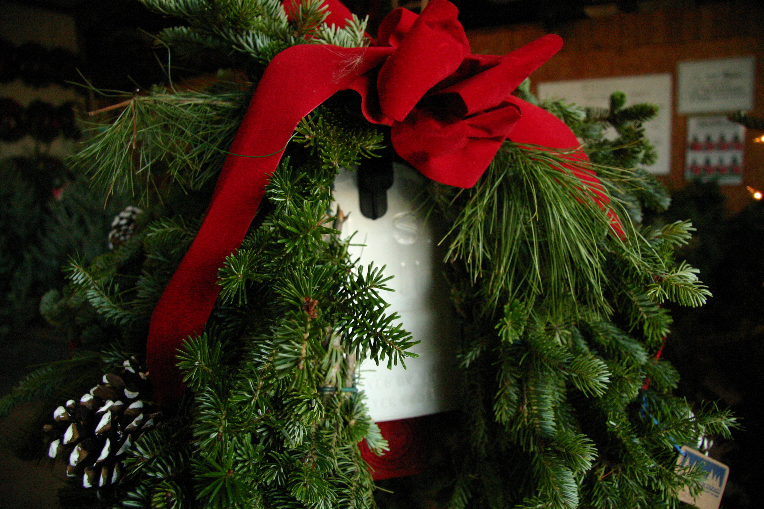 SPRUCE UP YOUR HOME WITH CHRISTMAS - Greenery