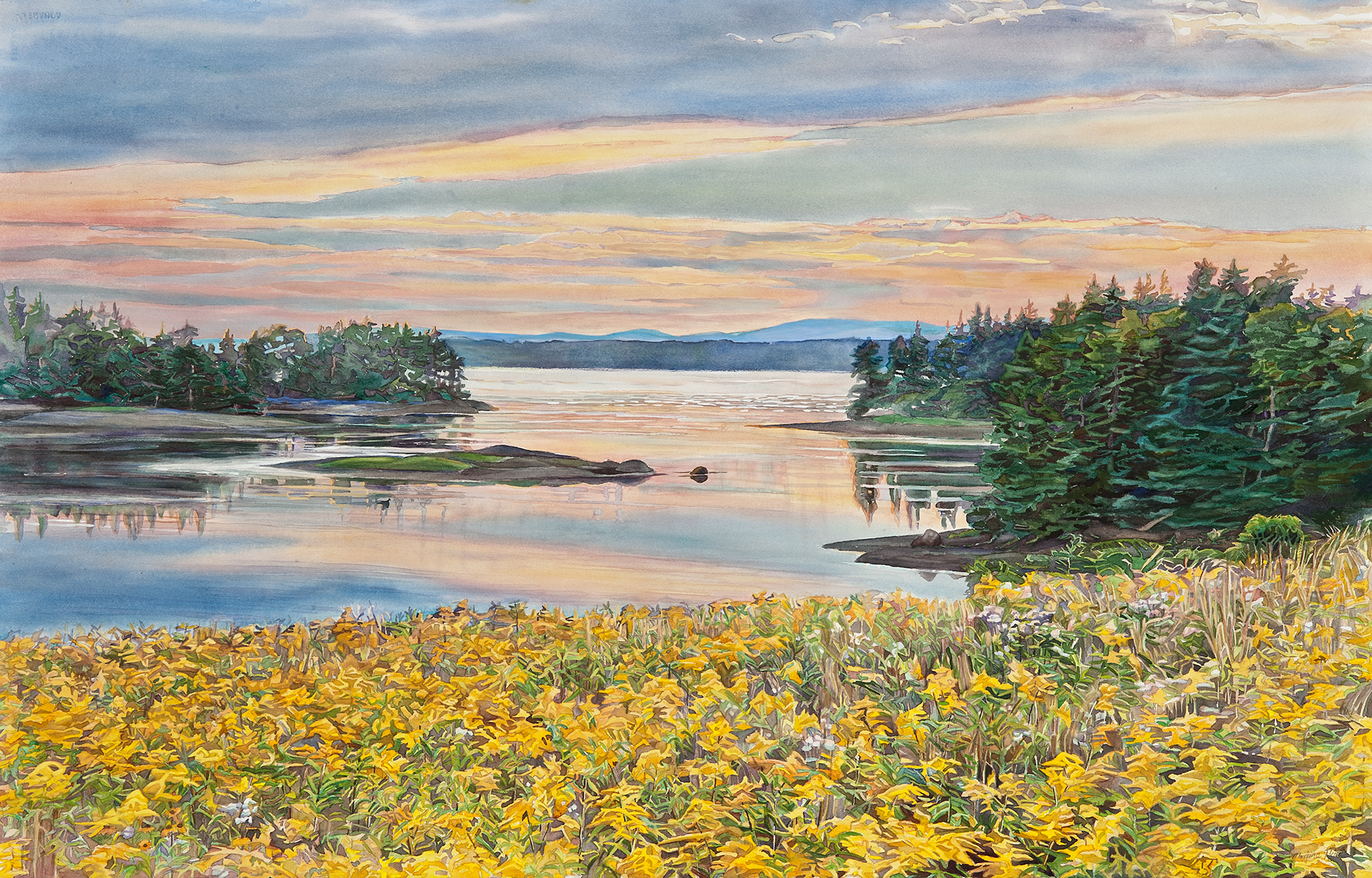 Goldenrod, Sunset, Maine