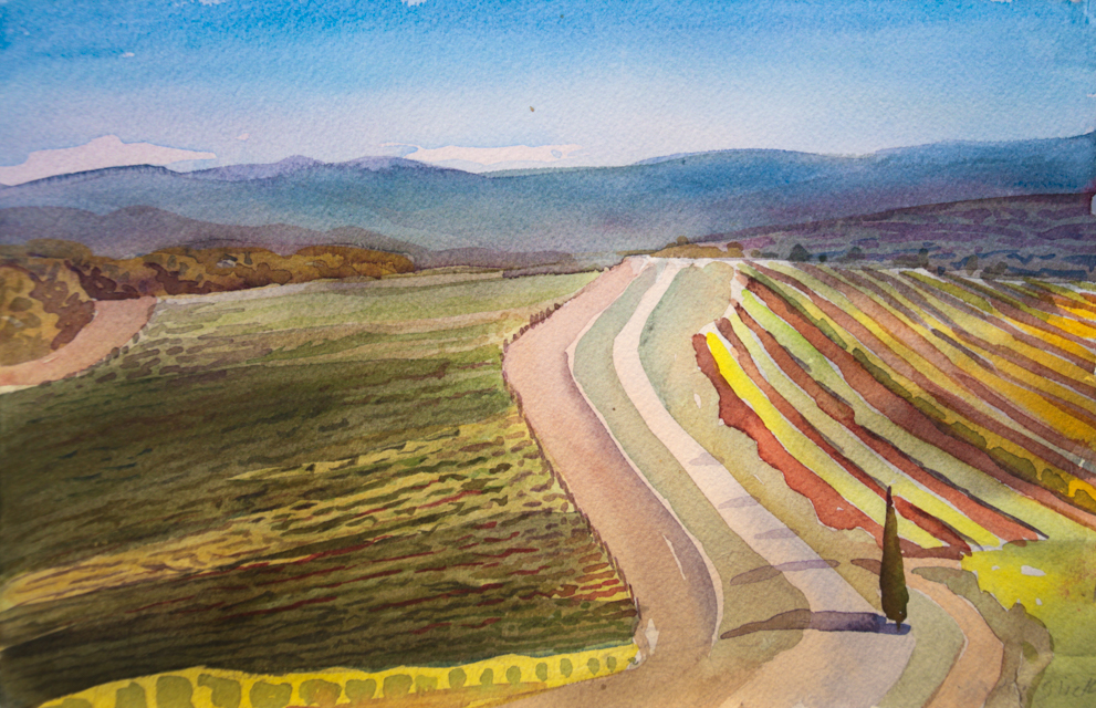 "Tuscany Vineyard, Watercolor, 8""x11""©Marjorie Glick"