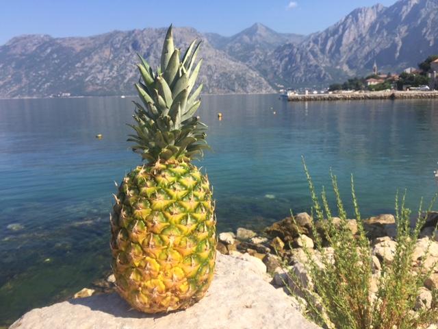 pineapple-shingles.jpg
