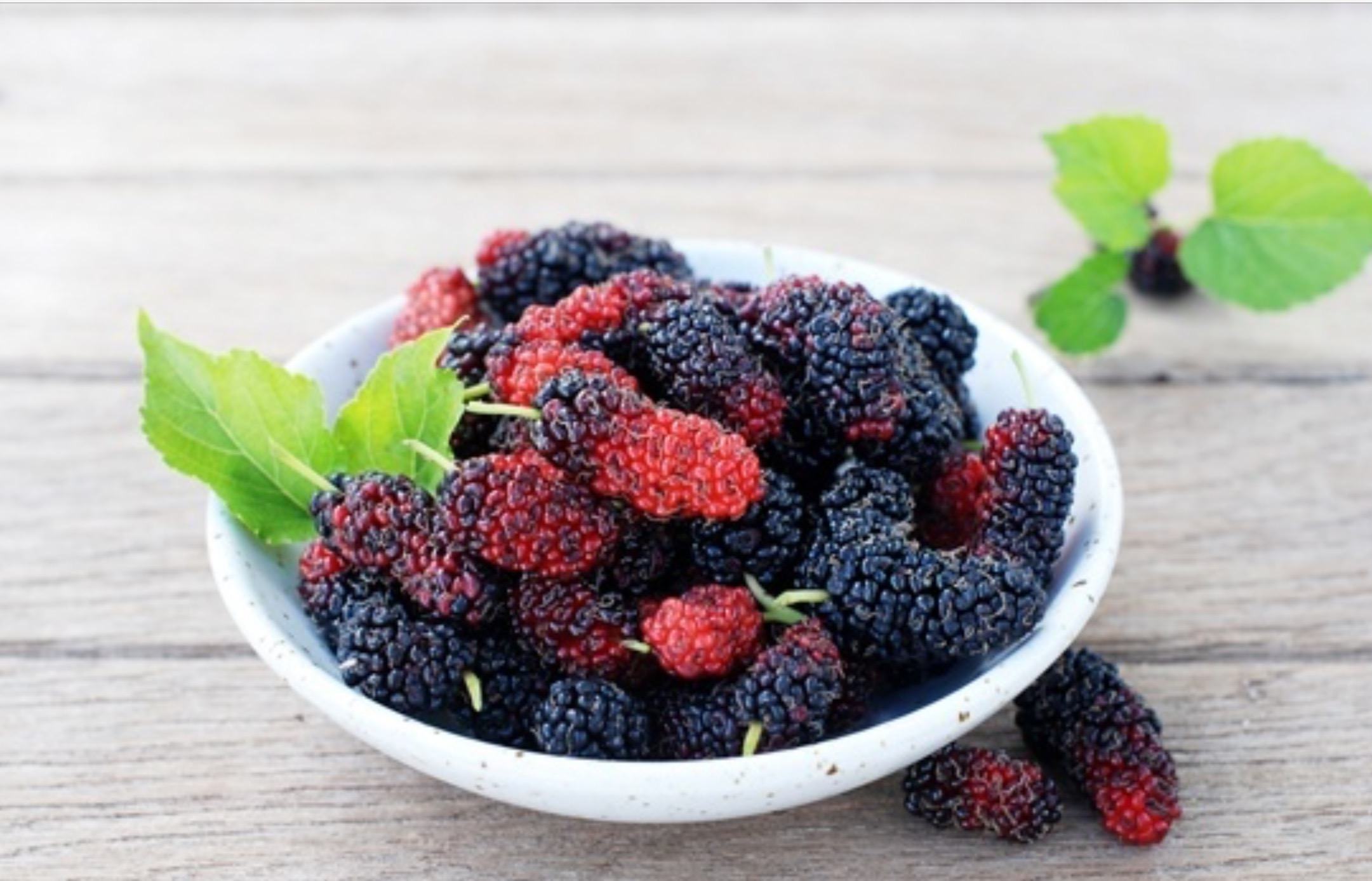 Mulberries: a little known health booster