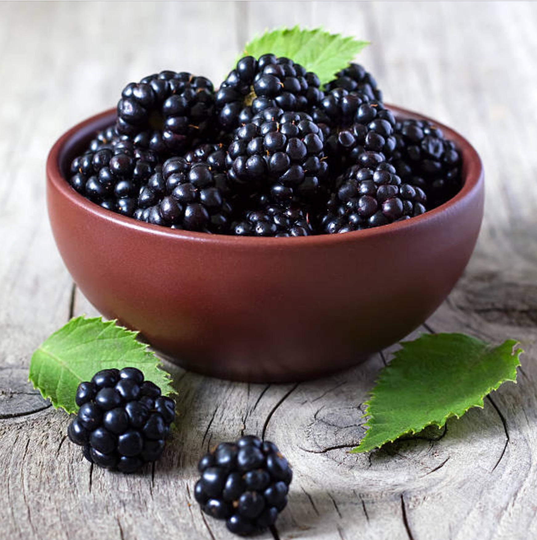 Blackberries - so good for you