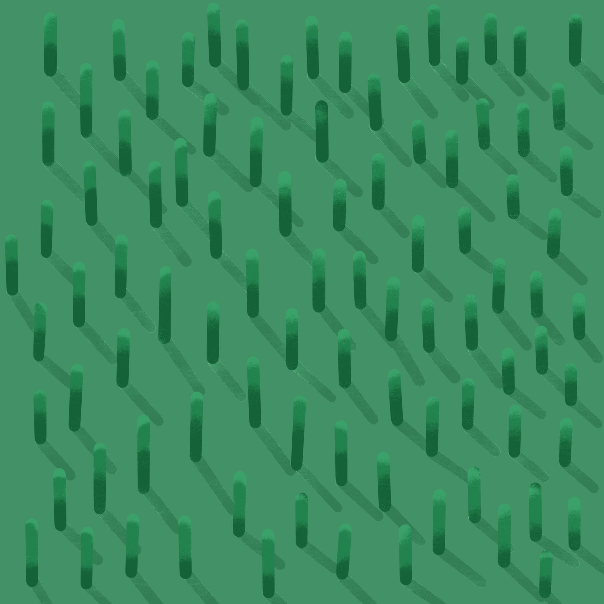 Gras zonderlagenkleinst kopie.jpg