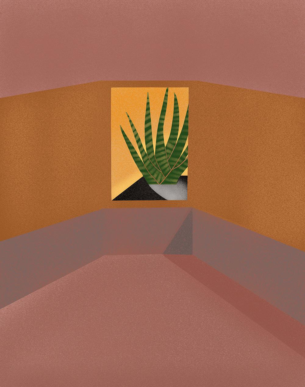 windowplant-website.jpg