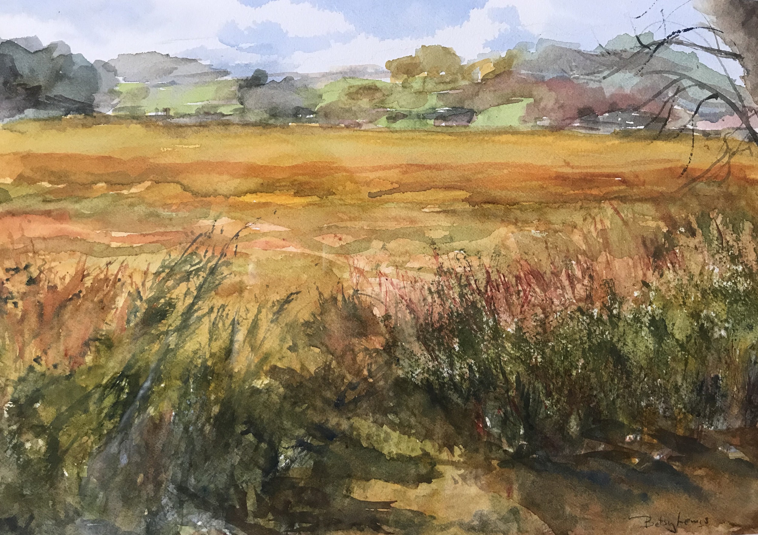 Betsy Lewis Watercolor %22Fall Marsh%22 9 x 13%22 $400.jpeg