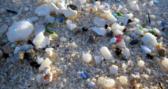 Photo source: NOAA