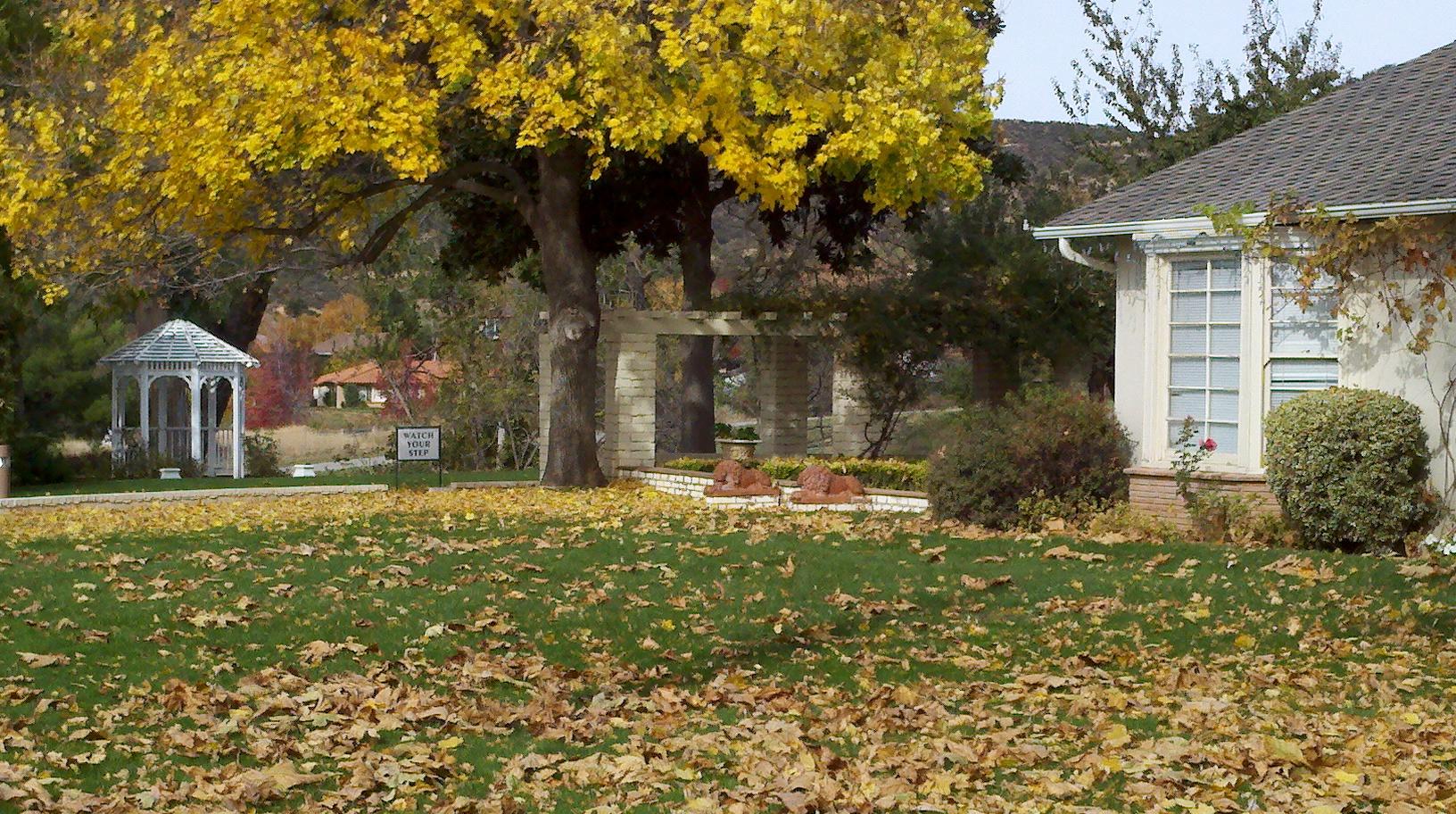 2011-11-28_09-50-43_228.jpg