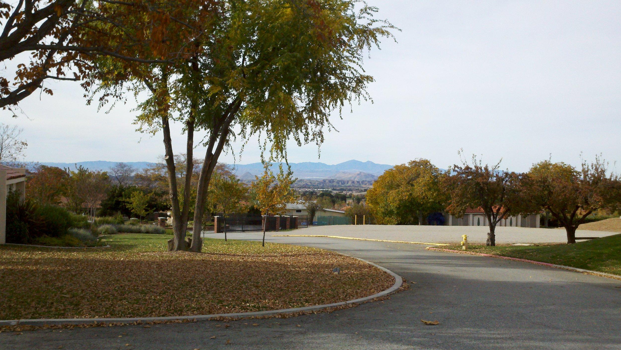 2011-11-28_09-49-29_826.jpg