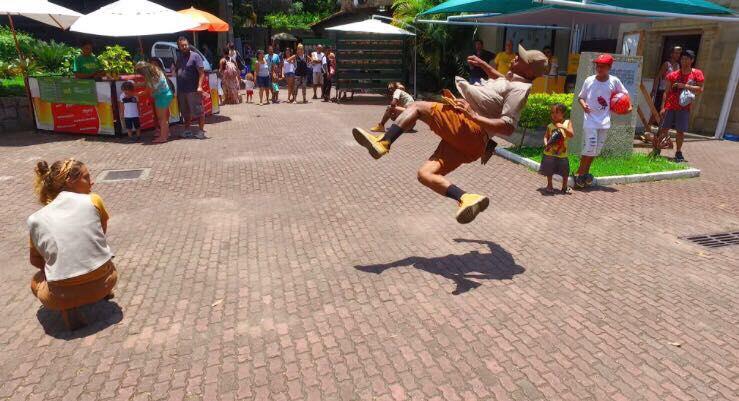Verão no Rio zoo - 2018