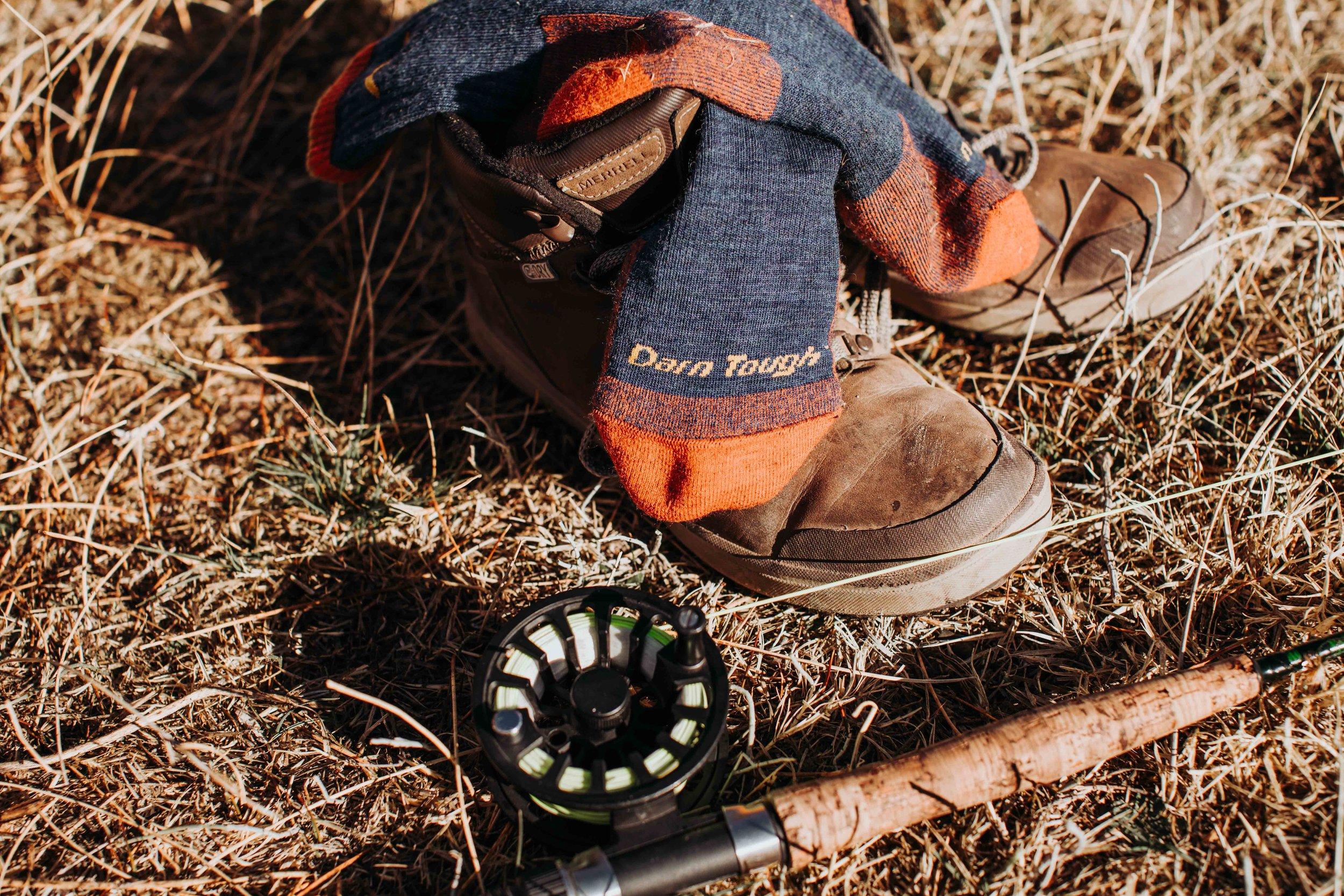 DB_DT_sierra_outdoors-5445.jpg