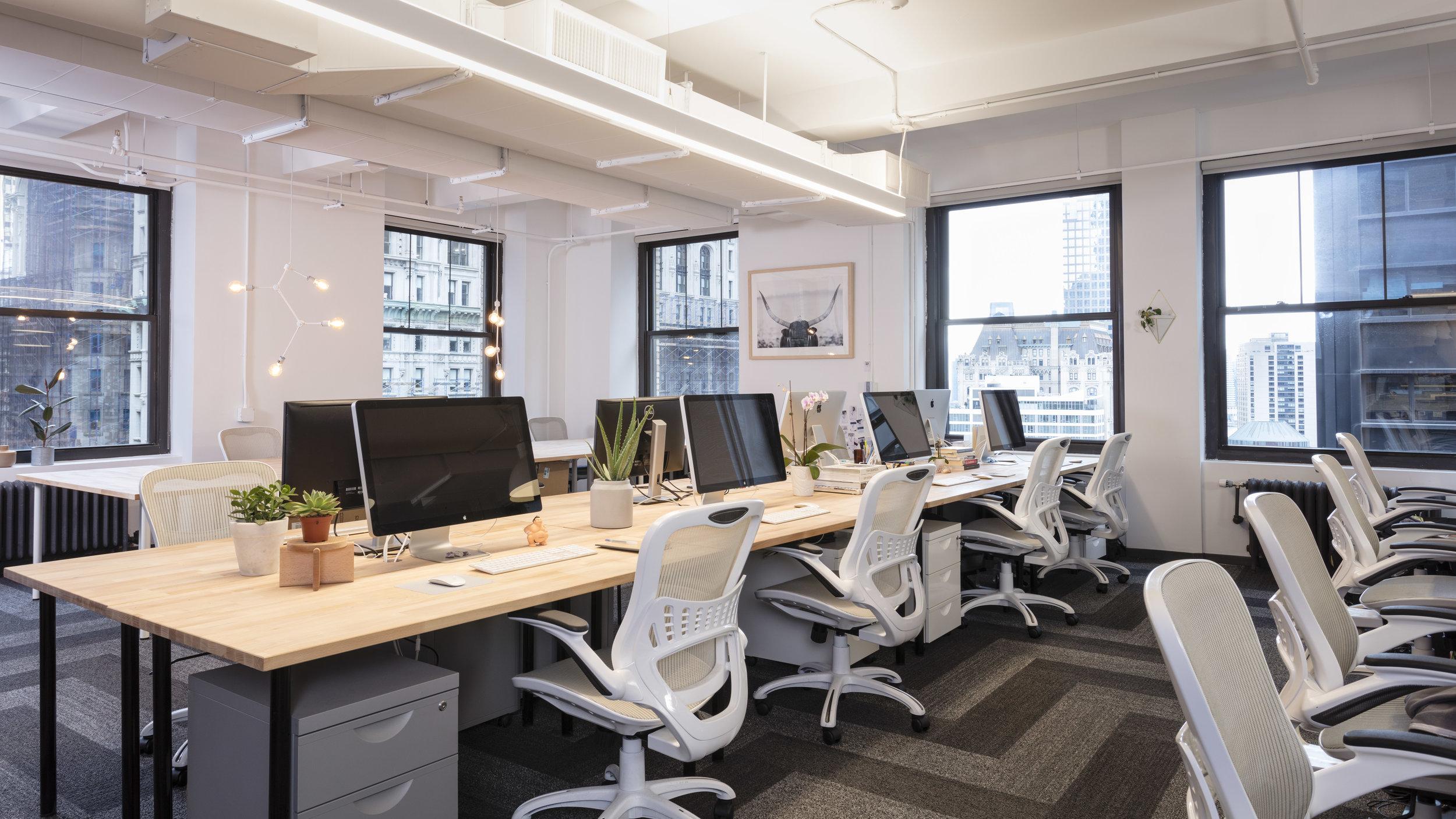 Zola Office Interior Design
