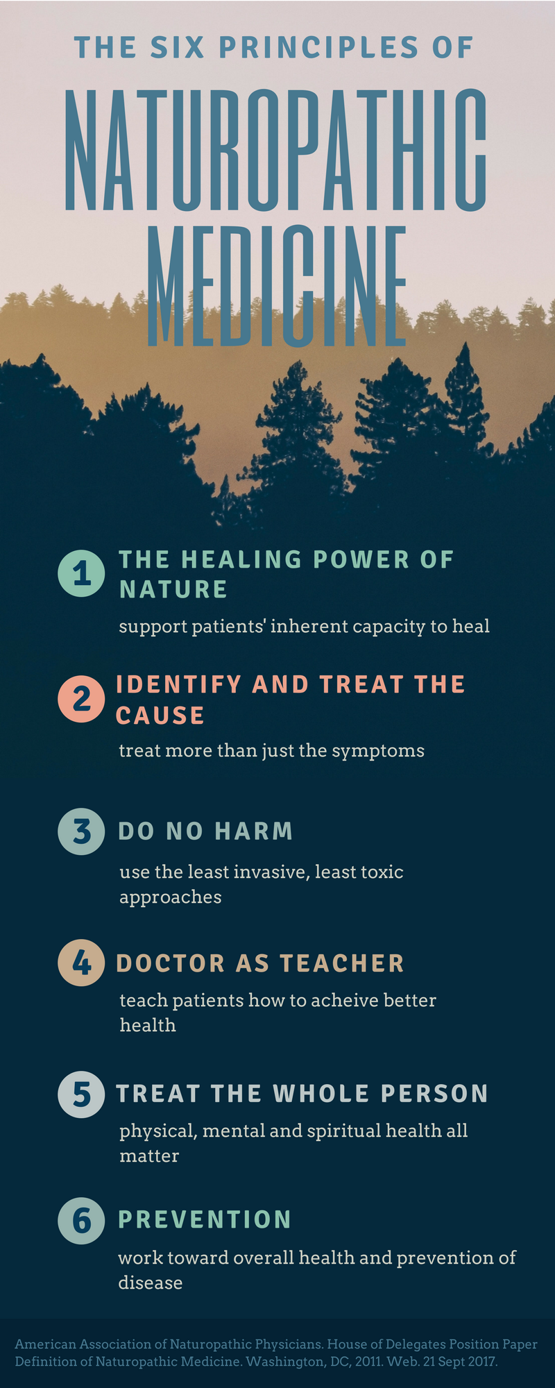 Blending the best of modern and traditional medicine - The tools that are often used by naturopathic doctors include diet and lifestyle counseling, medicinal herbs, homeopathic remedies, bodywork, hydrotherapy and occasionally, prescription medication.From the American Association of Naturopathic Physicians: