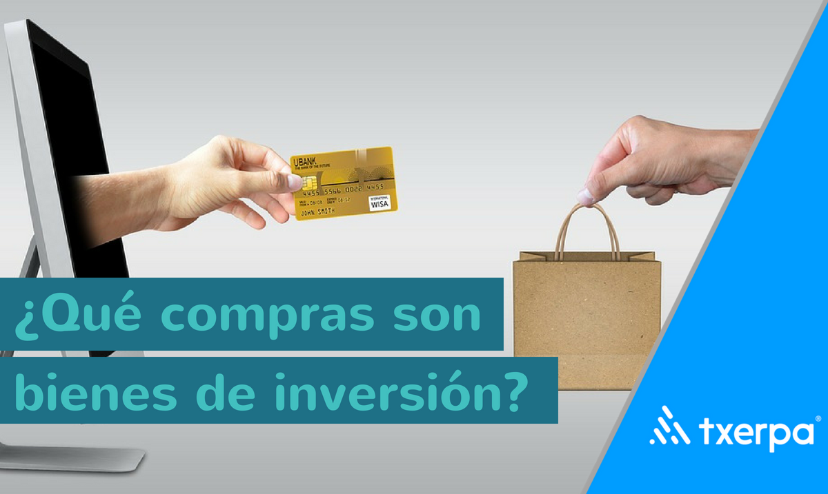 que_son_bienes_de_inversion_txerpa.png