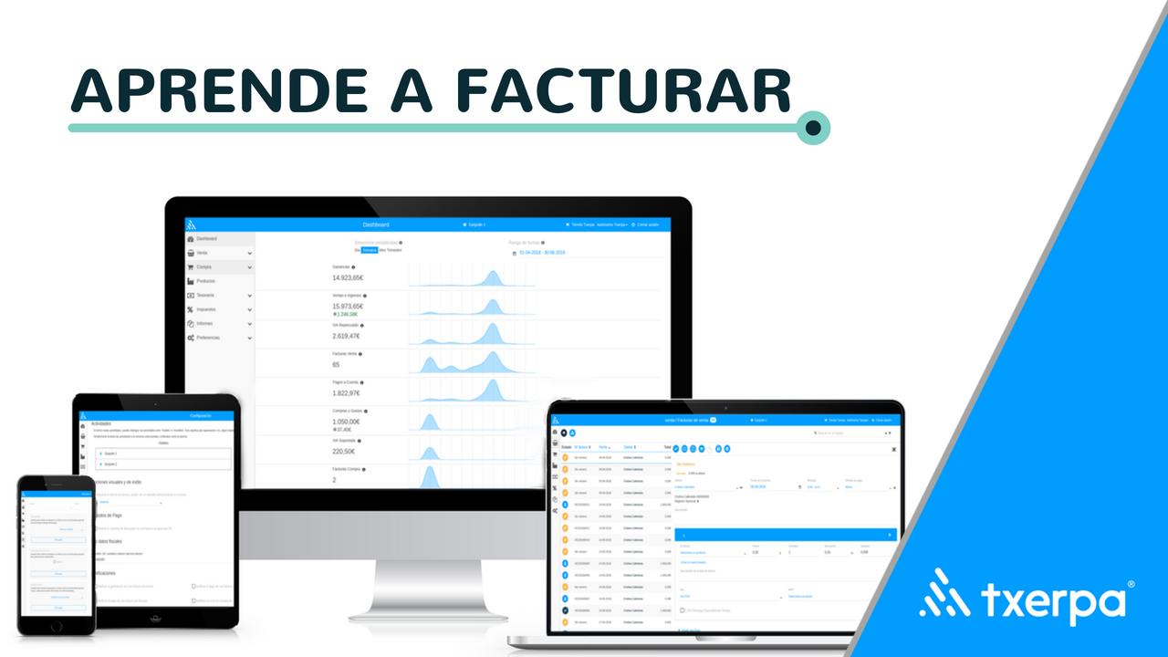 programa_para_generar_facturas_autonomos_txerpa.png