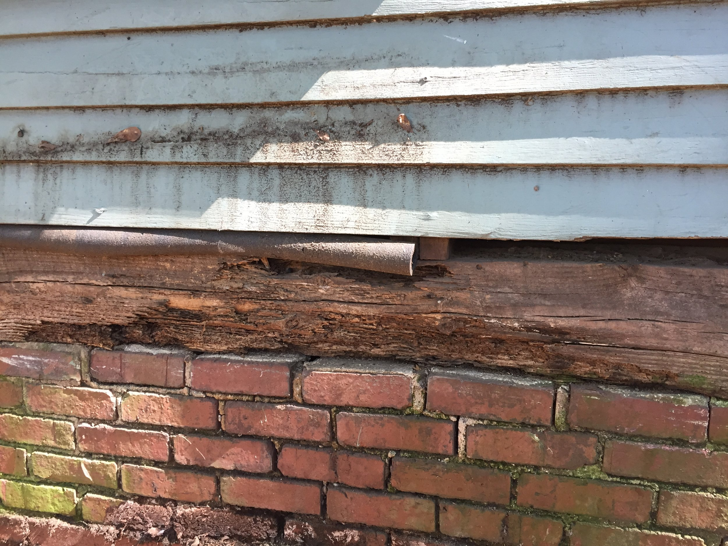 You can see all of the termite damage in the floor up the wall beam and into the ceiling.