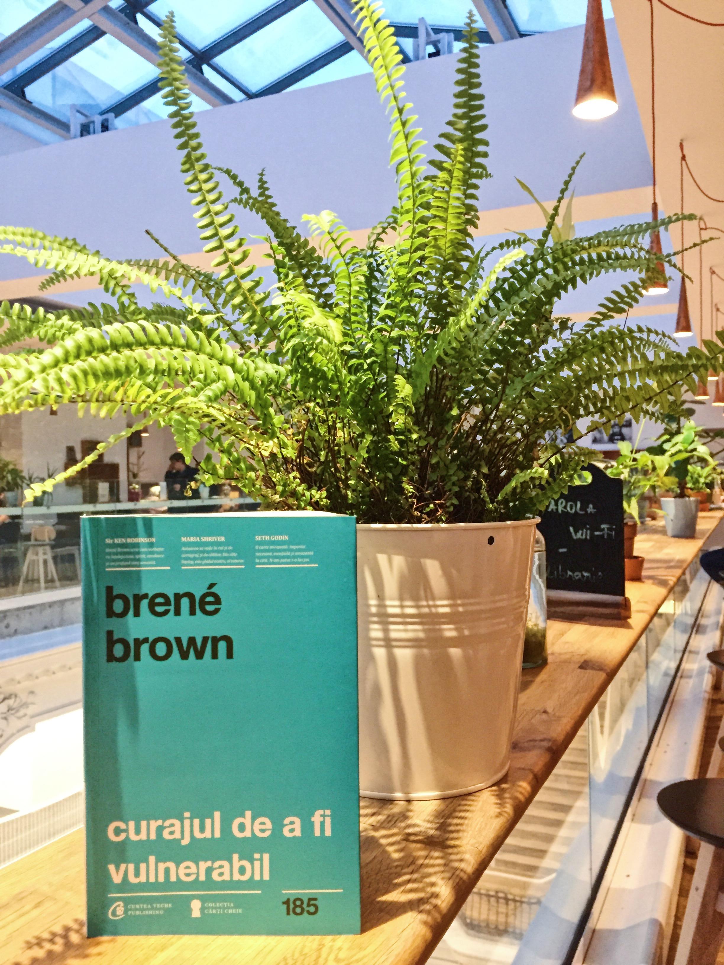 Brene Brown Vulnerabilitate Carturesti Yoga City.JPG