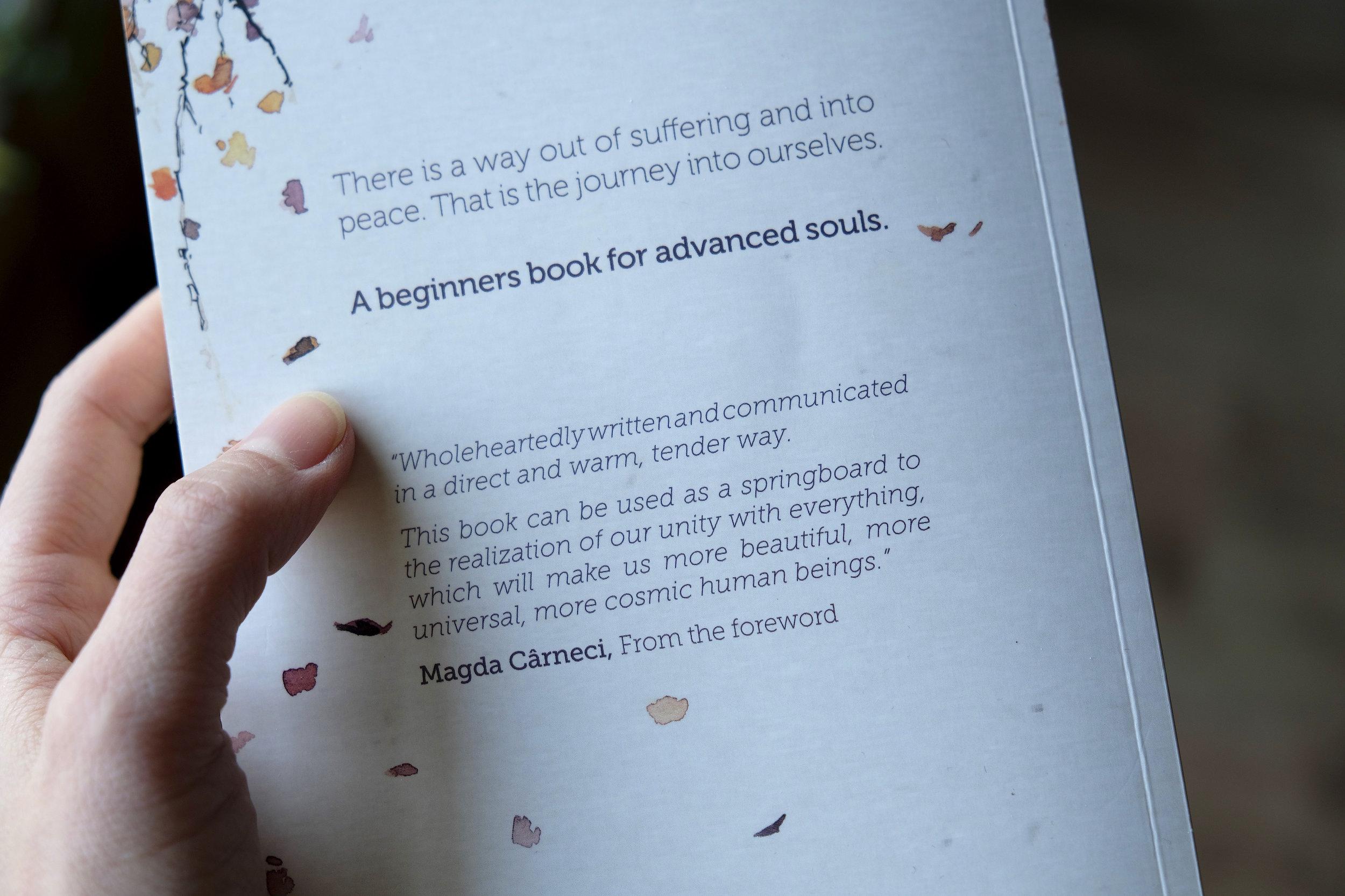 About Presence Carlos Labbate Yoga Book_Yoga City_5.jpg
