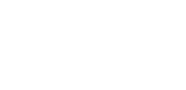 buffalo niagra OFFICIAL SELECTION.png