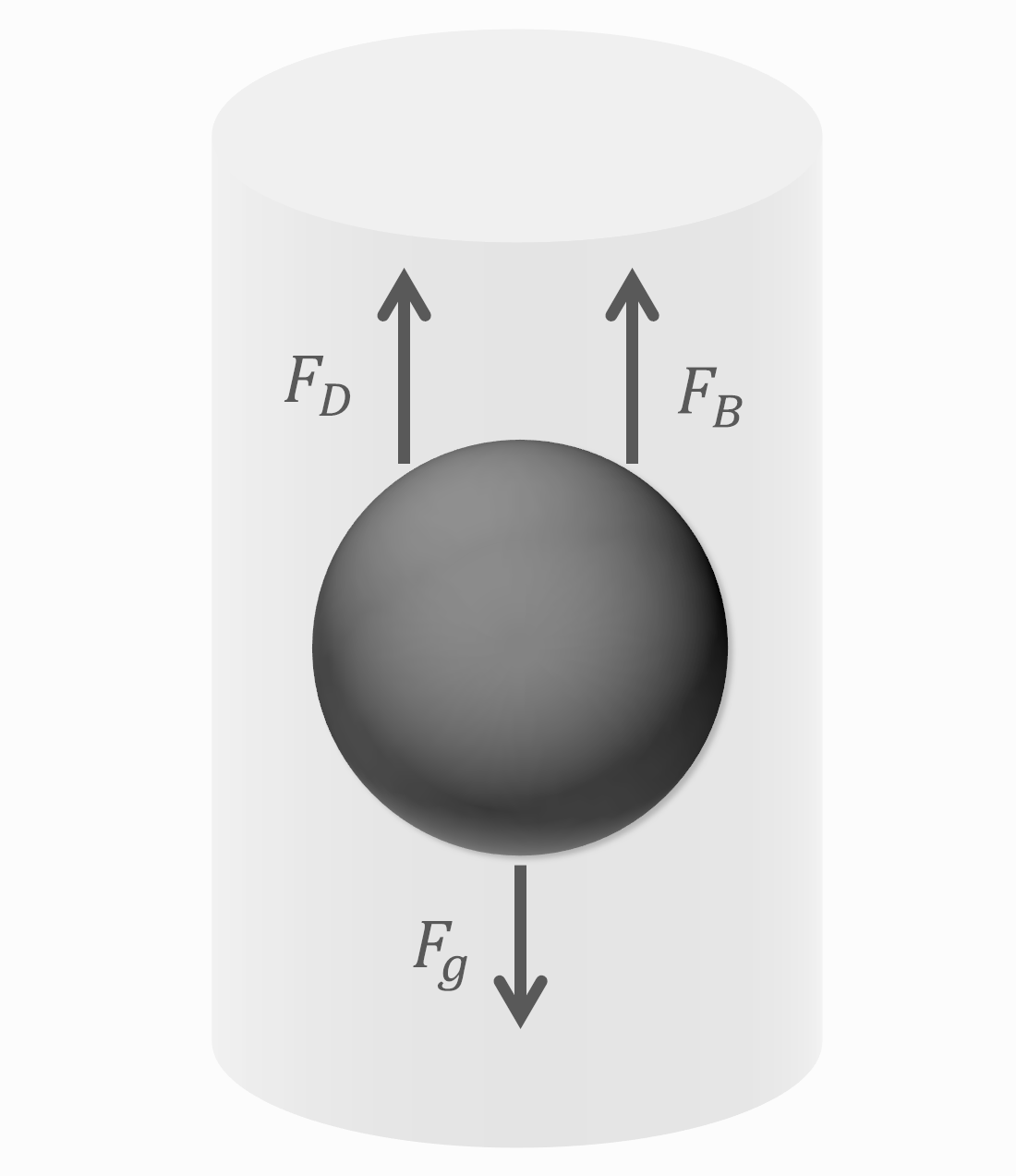 Force Balance on Falling Ping Pong Ball in a Tube -