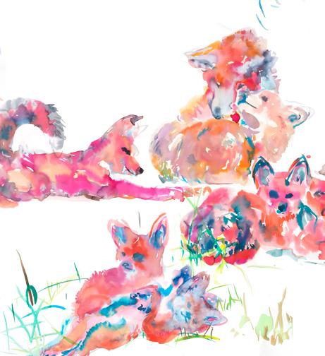 foxesDetail7.jpg