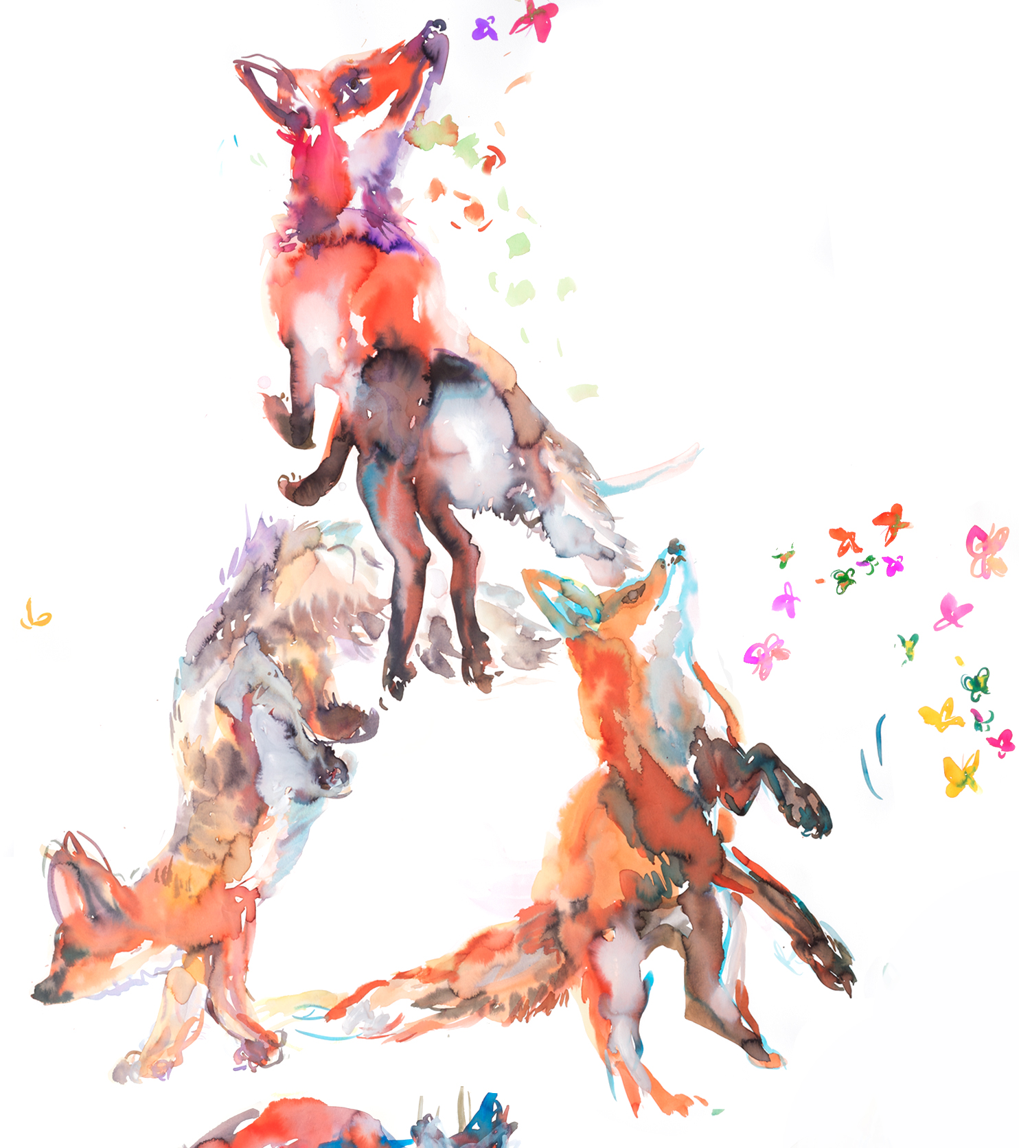 foxesDetail10.jpg