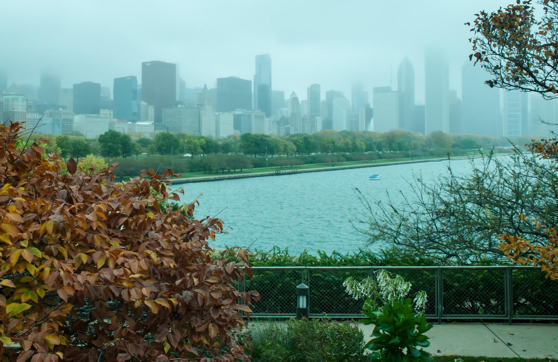 View frm the Bridge  Chicago, IL