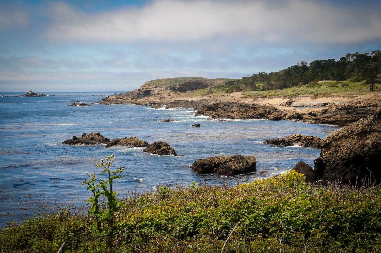 Monterey Coastline  Point Lobos, CA