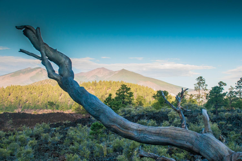 San Francisco Peaks  Flagstaff, AZ