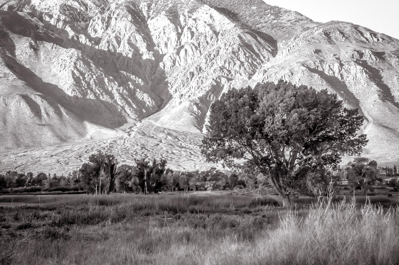 Sunrise   Rock Creek, CA