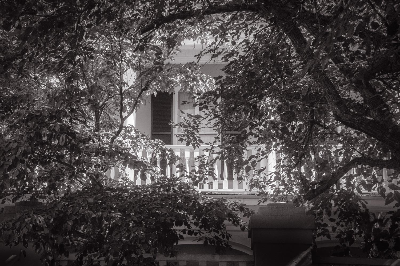 The Old Days   Charleston, SC
