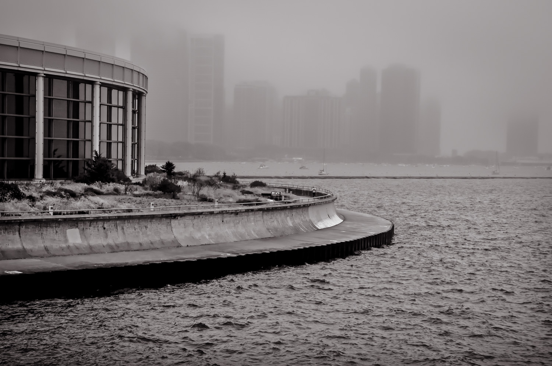 Foggy Day   Chicago, IL