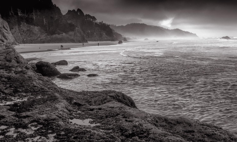 Misty   Oregon Coast