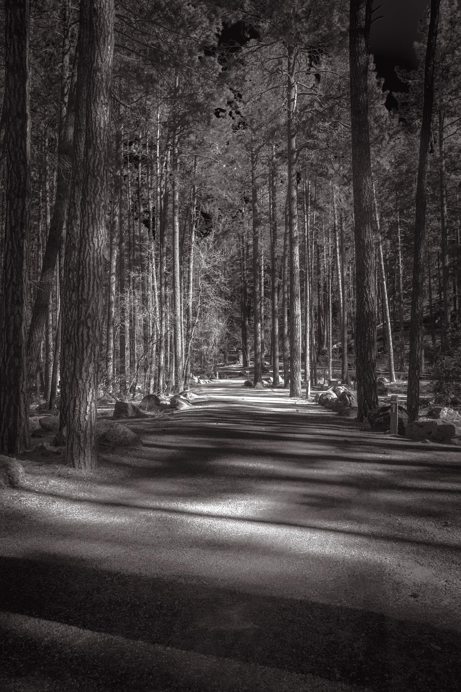Forbidden Way   West Fork, AZ