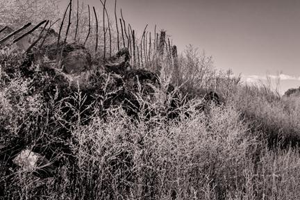 Sticks and Stones   Watson Lake, AZ