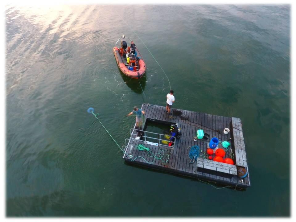 Tømmerflåde 2017 3.jpg