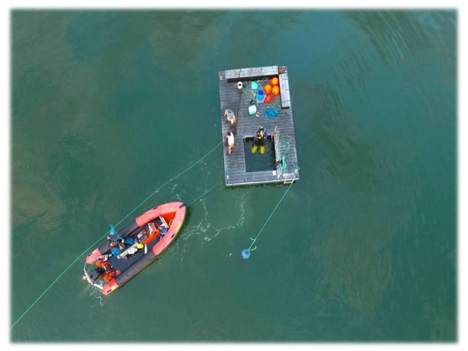 Tømmerflåde 2017 5.jpg