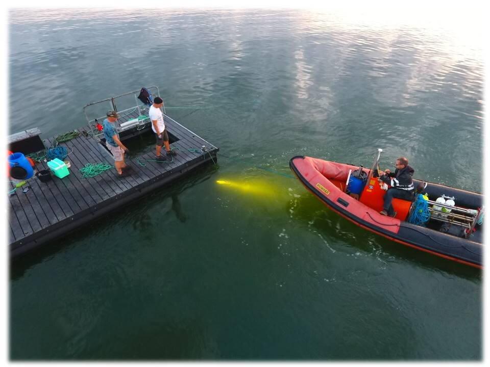 Tømmerflåde 2017 4.jpg