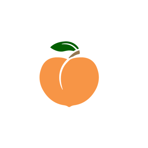 Copy of ccpl logo peach logo 1.png