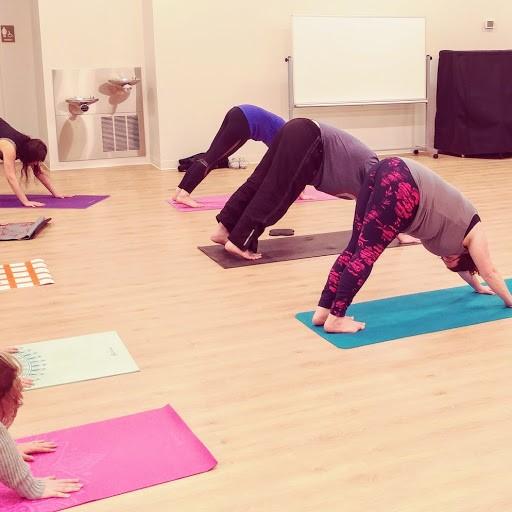 2018 yoga pic.jpg