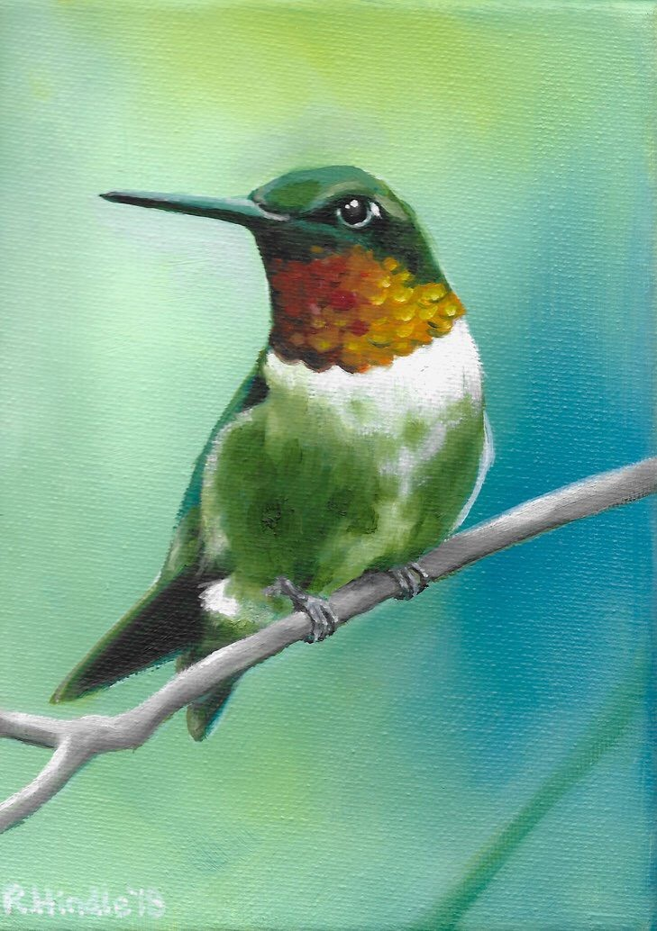 Rachel Hindle Hummingbird.jpg