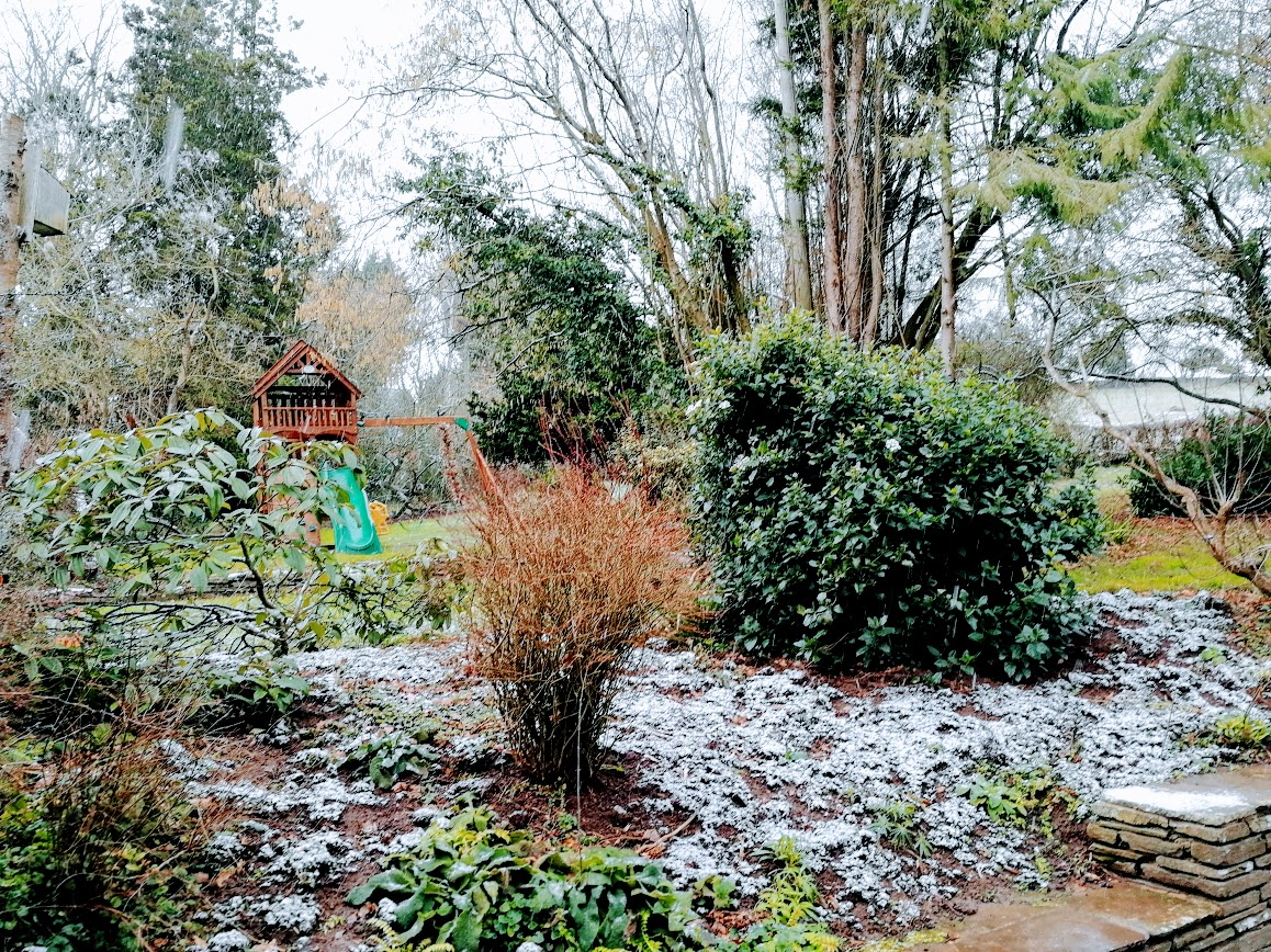 A light dusting
