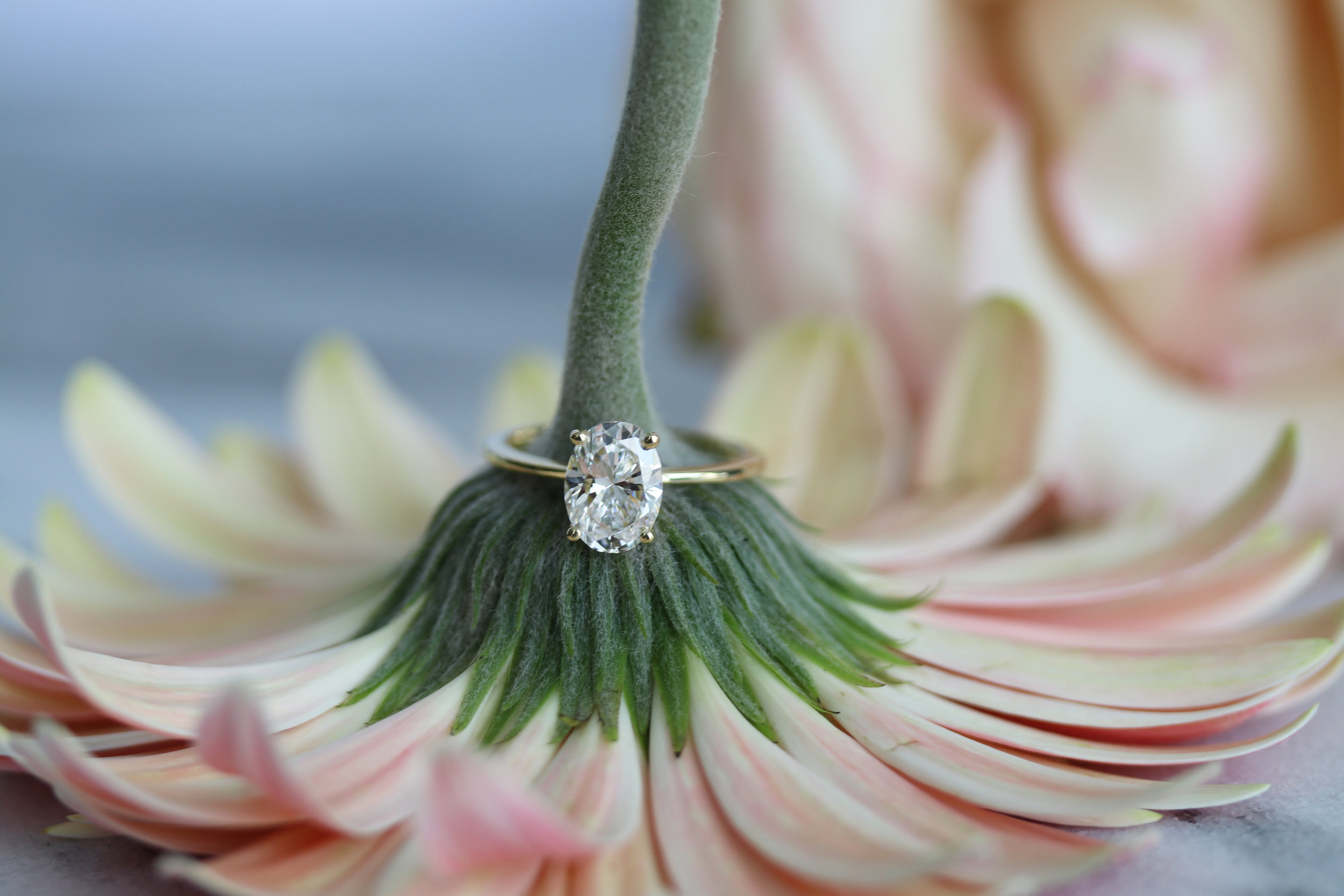 lab grown oval solitaire diamond engagement ring